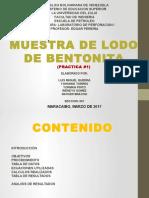 BENTONITA (1)