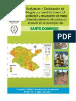 Informe Muncipio de Santo Domingo