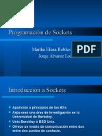 Program Ac i ó Nde Sockets