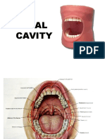Mouth Tongue and Salivary Glands