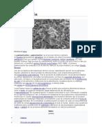 Pasteurización.doc Proyecto#1