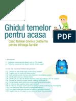 Ghid teme.pdf