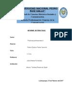 Informe Prácticas Profesionales II