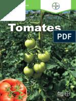 Programa_Tomates_fitosanitario.pdf
