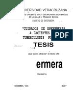 Tesis Enfermeria- Recuperacion Tuberculosis