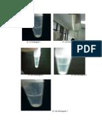 Gambar Biomol Print
