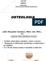 1 Osteologiaveterinriaufg 120927145657 Phpapp01