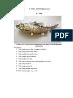 Hasil Ular Dan Ikan