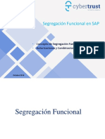 Segregación Funcional AIS SAP