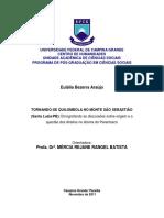 TORNANDO-SE QUILOMBOLA NO MONTE SÃO SEBASTIÃO (SANTA LUZIA/PB)