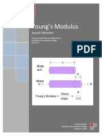 Test Young Modulus - 107samplelabjaycen