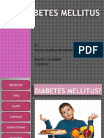 diabetesmellitus-130331033310-phpapp02