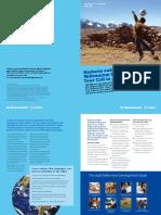 Business and the Millennium Development Goals