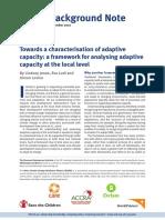 Towards a characterisation of adaptive capacity
