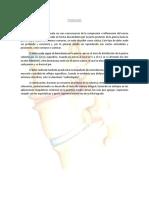 Síndrome de Compresión Radicular.pdf