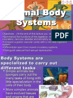 Animal Body Systems Revised