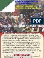 Clase.bioenergética 17