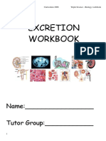 Workbook3 Excretion