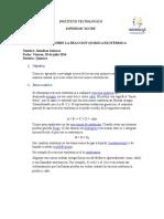 Reaccion quimica exotermica