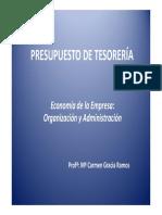 PRESUPUESTO TESORERIA