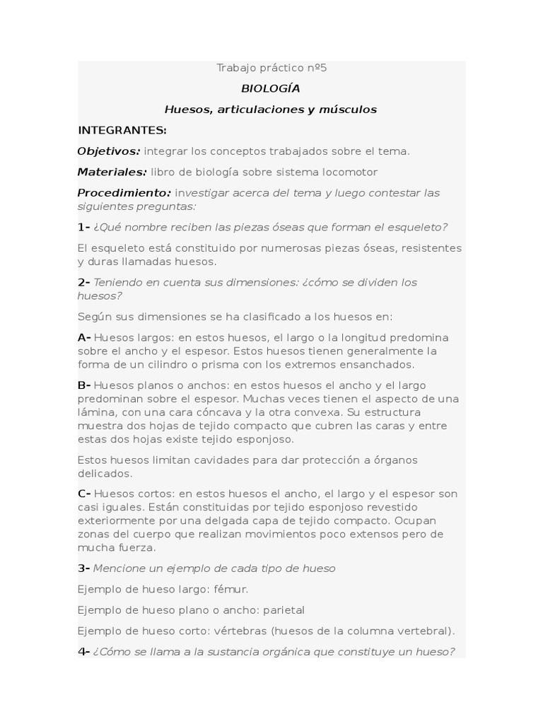 Fantástico Hojas De Trabajo De Huesos Para La Anatomía Ilustración ...