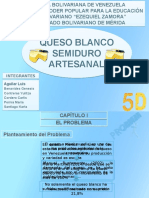 Queso Proyecto 5d - Copia