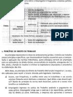 01#Livro_ Direito Do Trabalho - Analista Do Trt e Mpu - 2014