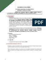 Tdr Et Contingencia Ernesto Guzman Gonzales Oxapampa Final