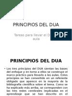 Principios del DUA
