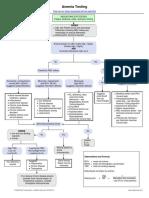 Anemia Testing algorithm.pdf
