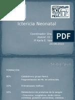 20110304 Pediatr Aclase07ictericia Neonatal
