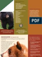 D. L. Bliss State Park Handbook
