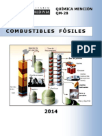 QM 28 14 Combustibles Fósiles