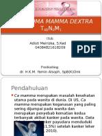 154724_case CA Mammae Sin-1