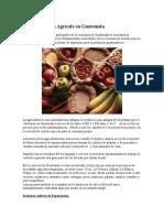 Historia Agricultura Guatemala