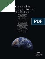 Derech Internacional Publico Huygens