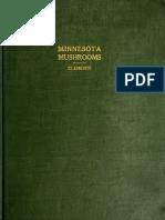 (1910) Minnesota Mushrooms