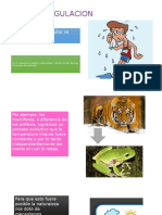 TERMORREGULACION y homeo.pptx