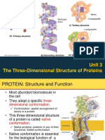 Unit 3 the Three Dimensional Structure of Proteins