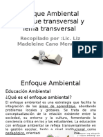 Enfoque Ambiental ,Enfoque Transversal y Tema Transversal