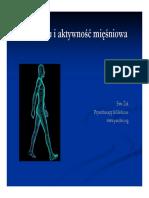 fazy_chodu_aktywnosc_miesniowa.pdf
