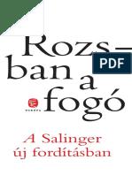 Salinger Kisfuzet