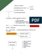 Cursul 3 - PARODONTITELE APICALE CRONICE.doc