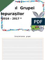 0_jurnalul_grupei.docx