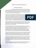 El Peligro de Una Sola Historia - Chimamanda Adichie0001