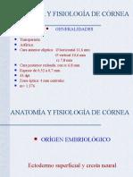 Anatomía y Fisiología de Córnea