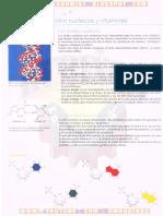ÁCIDOS NUCLEICOS Y VITAMINAS.pdf