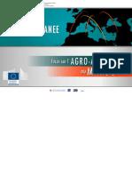 Focus Sur l'Agroalimentaire Au Maroc