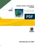 1 SAP HCM Overview - Introduction