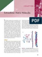 ch_29_Extracellular Matrix Molecules.pdf